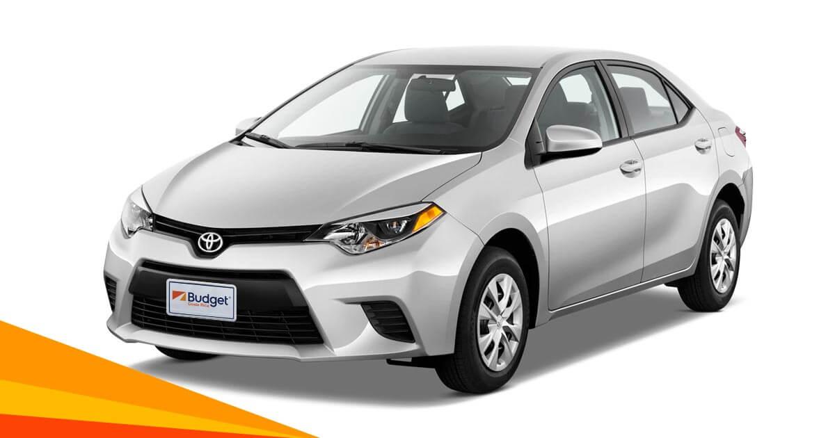 Economy Car Rental Customer Care